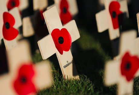 Remembrance Day 2019. Credit: The Express