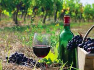 Georgian wine. Credit to VOA