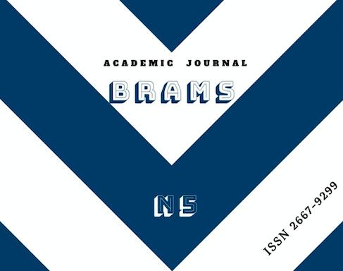 BRAMS Journal N5