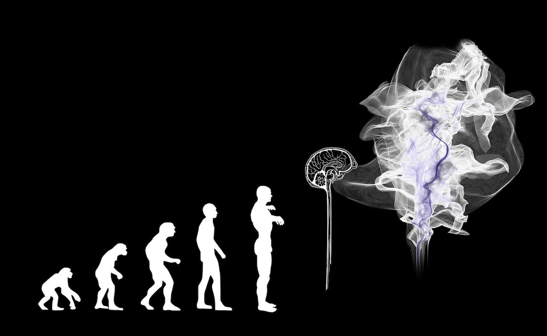 Artificial Intelligence (AI) evolution. Credit: Gerd Altmann