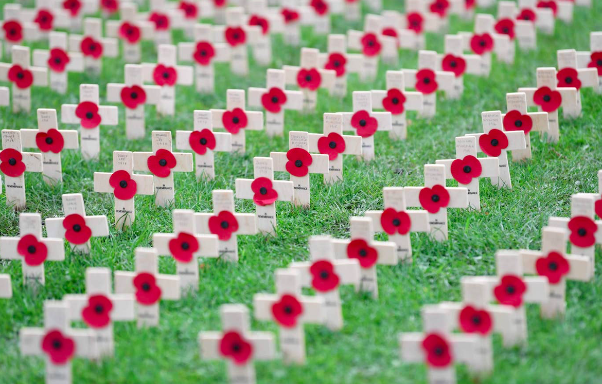 Remembrance poppies at a war memorial in Hartlepool. Credit: AFP via Getty Images/The Standard