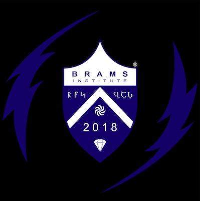 BRAMS Institute logo with circled R 03. Credit to Maia Nadareishvili