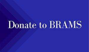 Donate to BRAMS